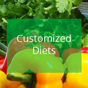 customized-diets
